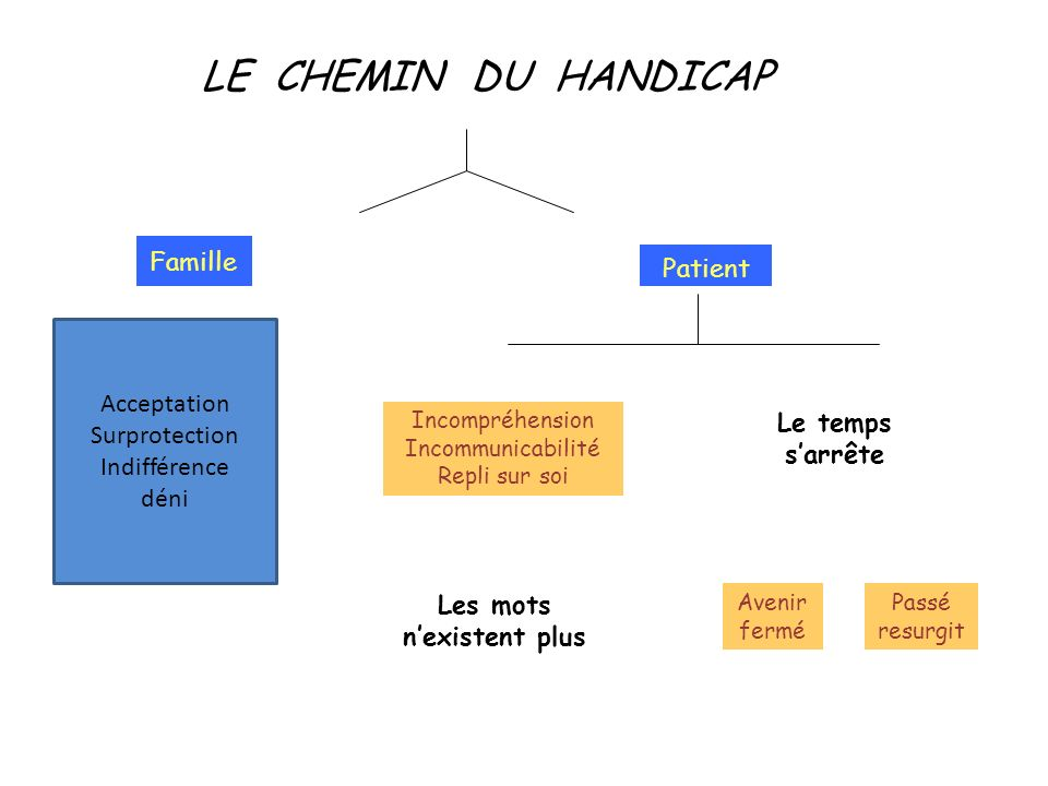 LE CHEMIN DU HANDICAP Famille Patient Acceptation Surprotection
