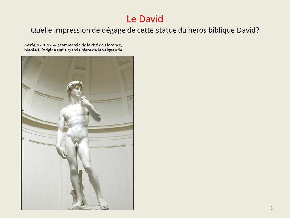 Le David Quelle impression de dégage de cette statue du héros biblique David