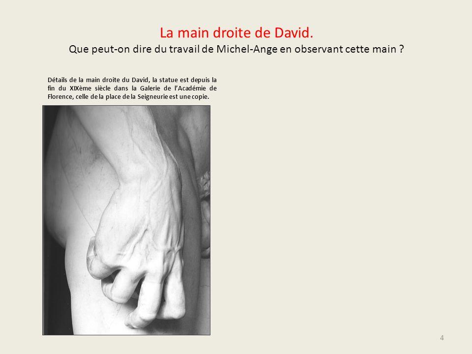 La main droite de David. Que peut-on dire du travail de Michel-Ange en observant cette main