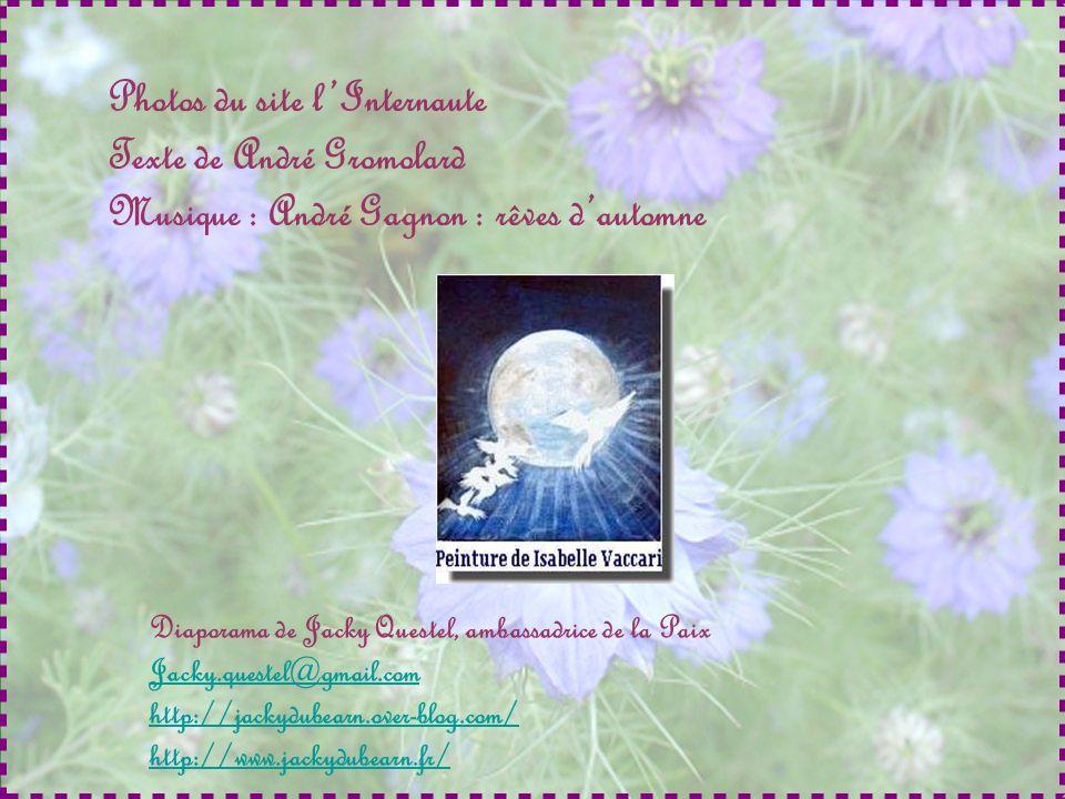 Photos du site l'Internaute Texte de André Gromolard