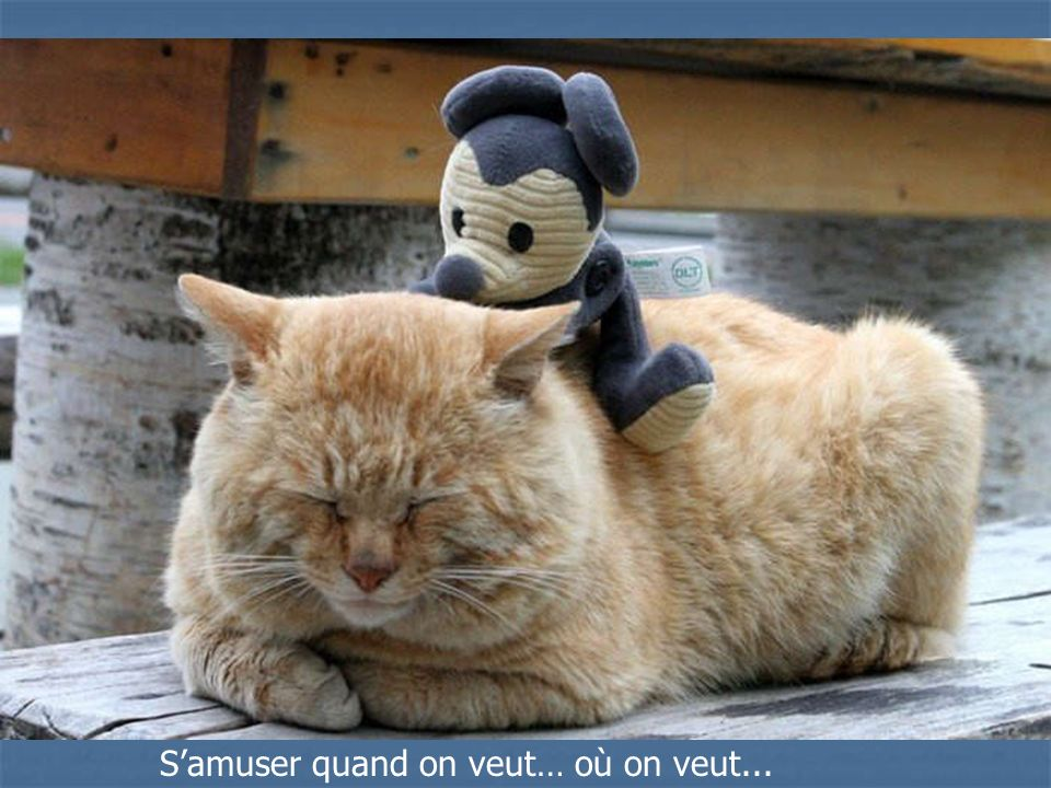 S'amuser quand on veut… où on veut...
