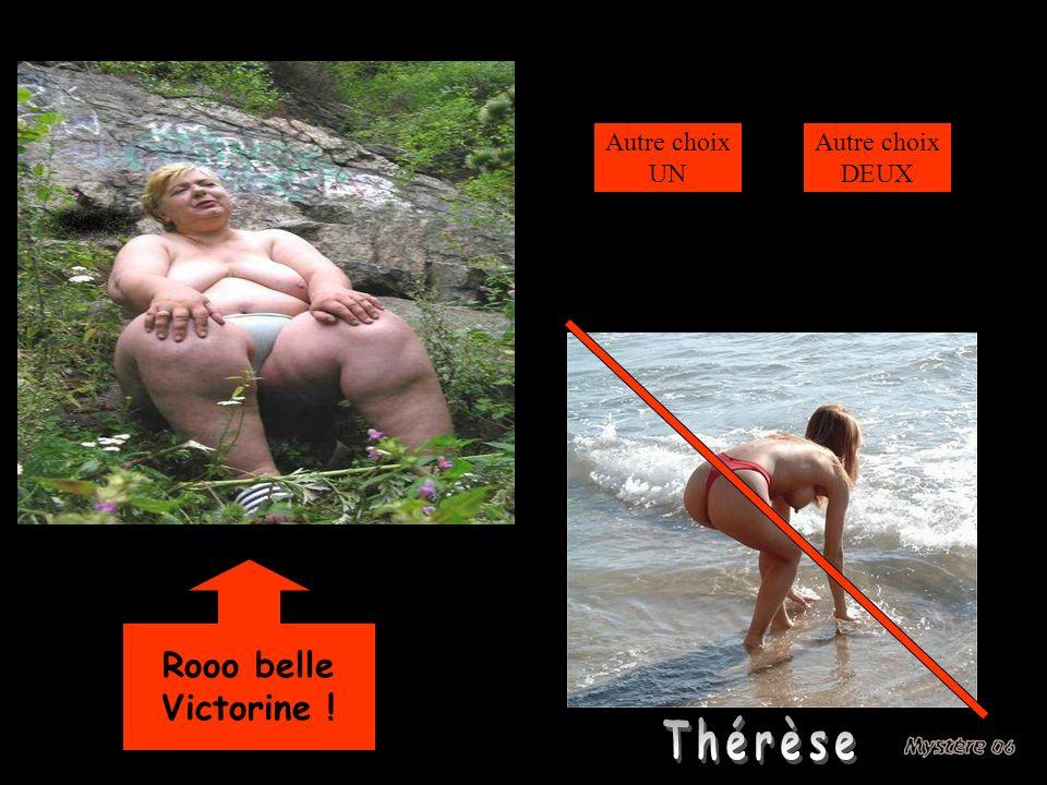 Autre choix UN Autre choix DEUX Perdu Rooo belle Victorine ! Thérèse