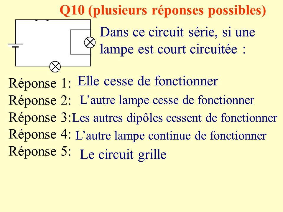 Q10 (plusieurs réponses possibles)