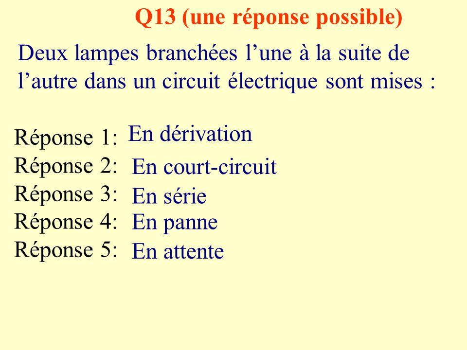 Q13 (une réponse possible)