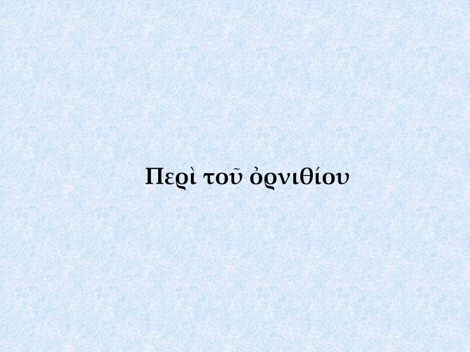 Περὶ τοῦ ὀρνιθίου
