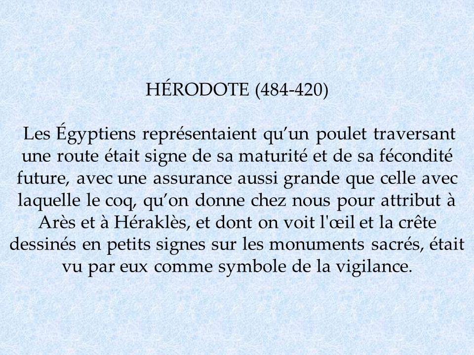 HÉRODOTE (484-420) Les Égyptiens représentaient qu'un poulet traversant une route était signe de sa maturité et de sa fécondité future, avec une assurance aussi grande que celle avec laquelle le coq, qu'on donne chez nous pour attribut à Arès et à Héraklès, et dont on voit l œil et la crête dessinés en petits signes sur les monuments sacrés, était vu par eux comme symbole de la vigilance.