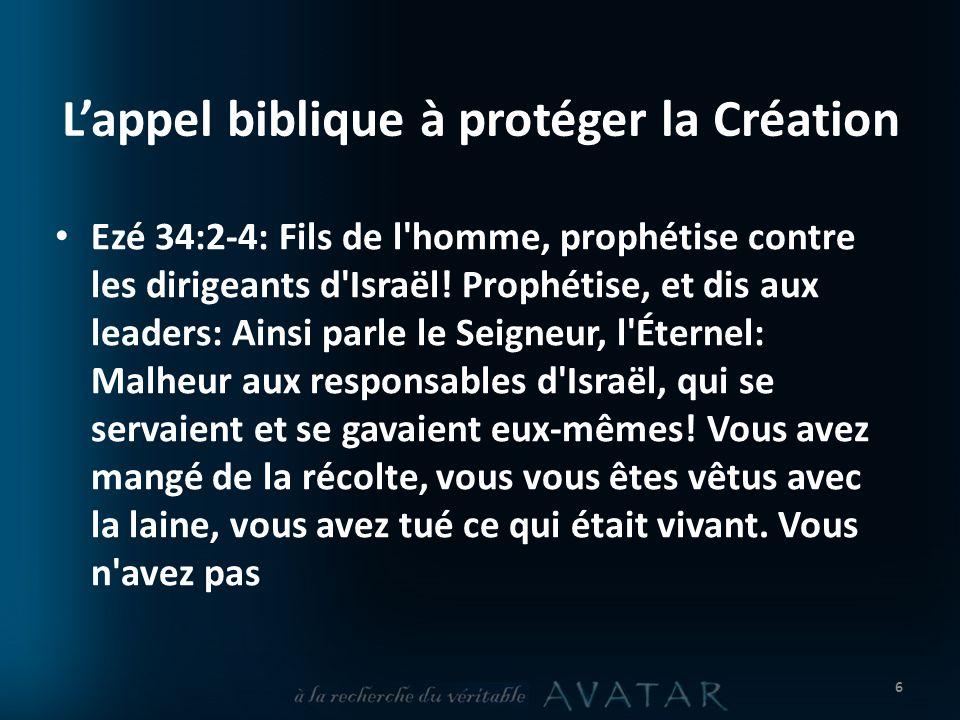 L'appel biblique à protéger la Création