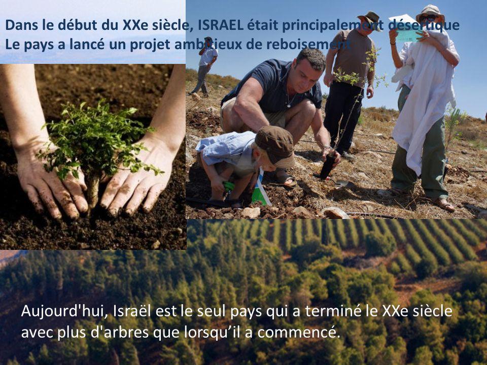 Dans le début du XXe siècle, ISRAEL était principalement désertique