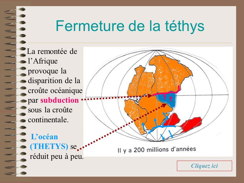 Fermeture de la téthys La remontée de l'Afrique provoque la disparition de la croûte océanique par subduction sous la croûte continentale.