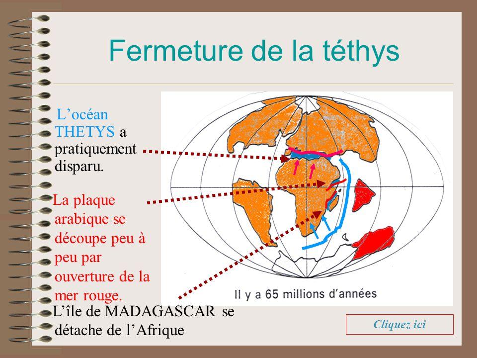 Fermeture de la téthys L'océan THETYS a pratiquement disparu.
