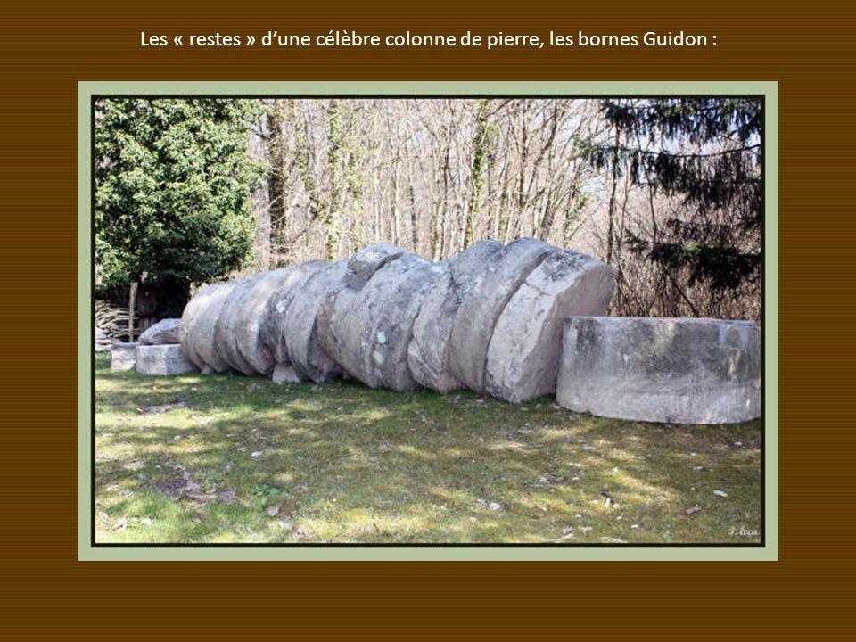 Les « restes » d'une célèbre colonne de pierre, les bornes Guidon :