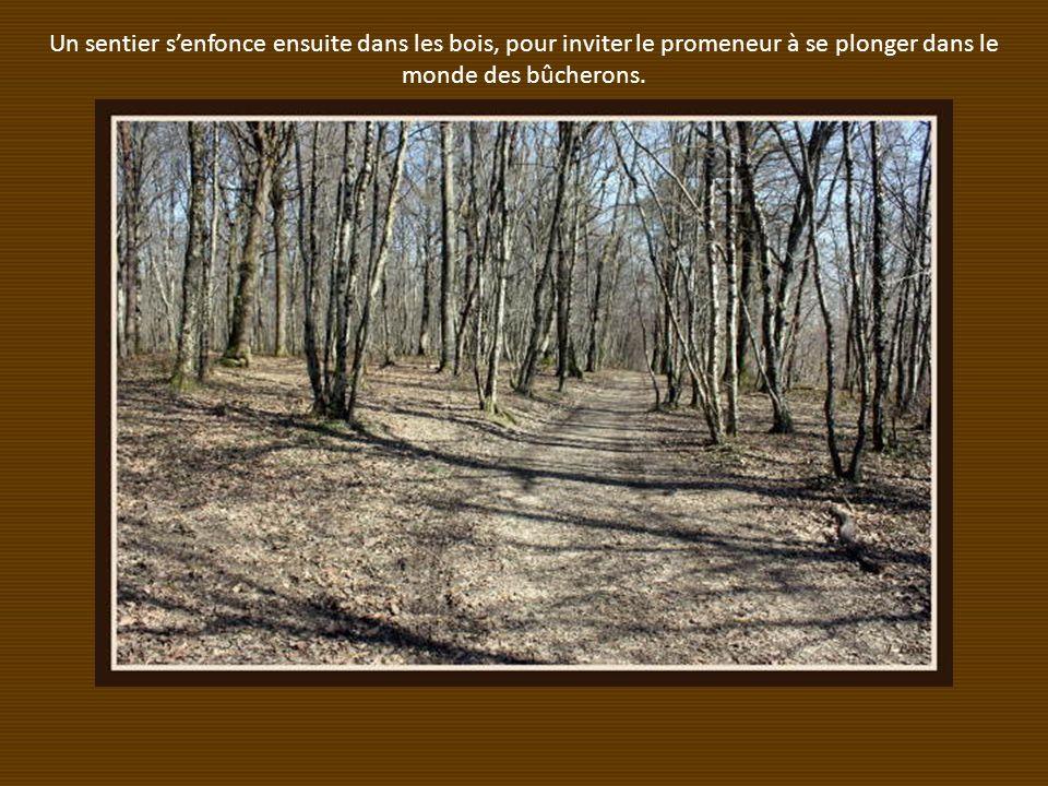 Un sentier s'enfonce ensuite dans les bois, pour inviter le promeneur à se plonger dans le monde des bûcherons.