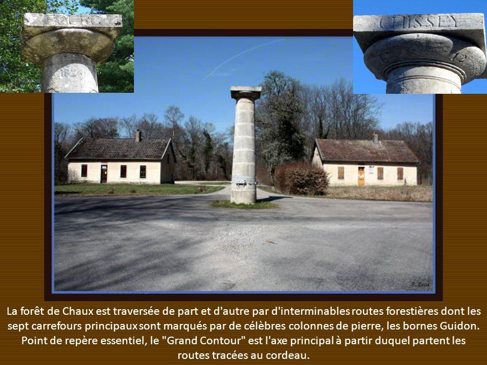 La forêt de Chaux est traversée de part et d autre par d interminables routes forestières dont les sept carrefours principaux sont marqués par de célèbres colonnes de pierre, les bornes Guidon.