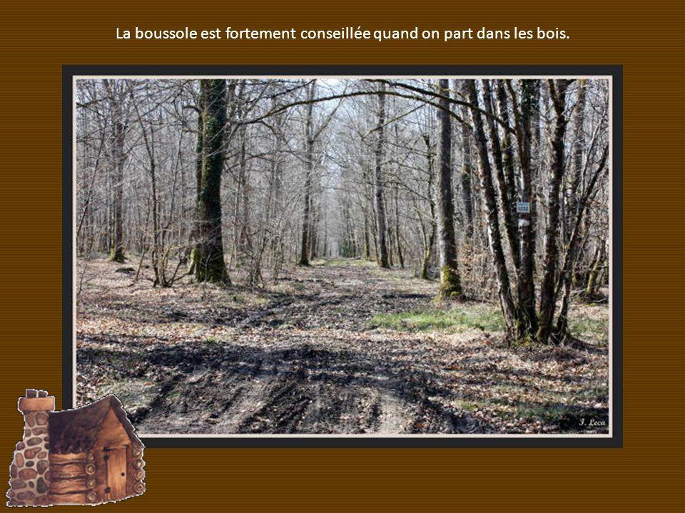 La boussole est fortement conseillée quand on part dans les bois.