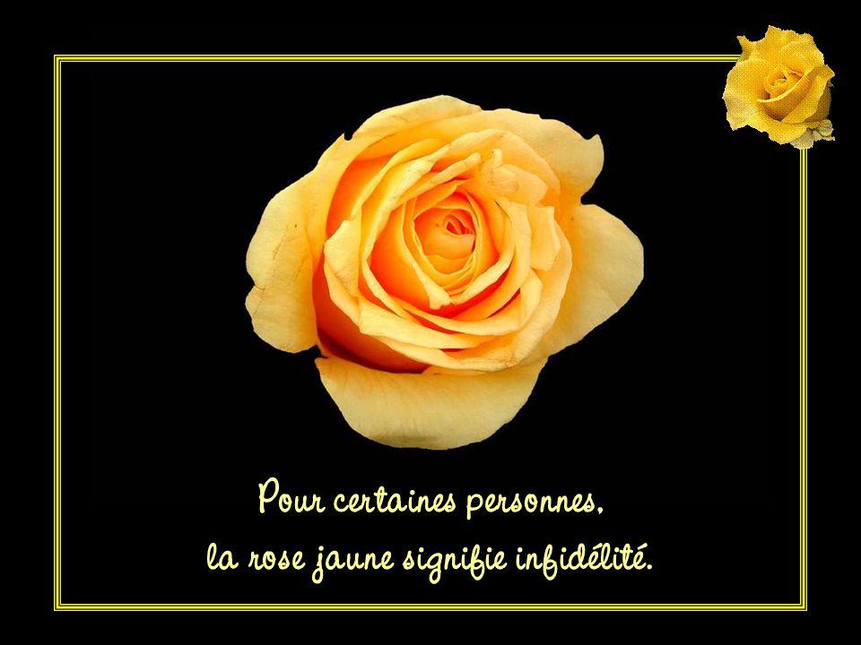 Pour certaines personnes, la rose jaune signifie infidélité.