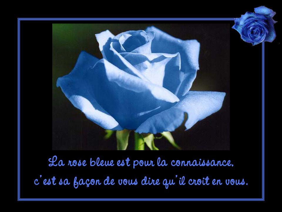 La rose bleue est pour la connaissance, c est sa façon de vous dire qu il croit en vous.