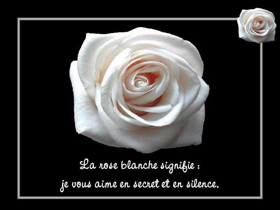 La rose blanche signifie : je vous aime en secret et en silence,