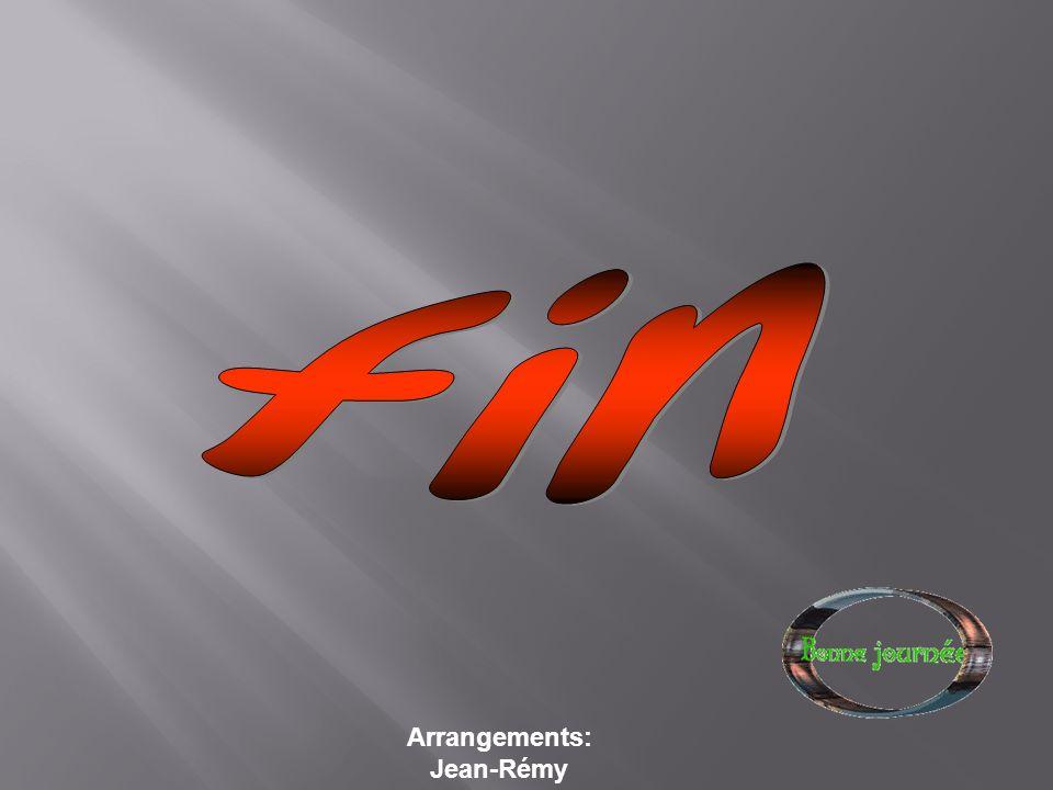 fin Arrangements: Jean-Rémy