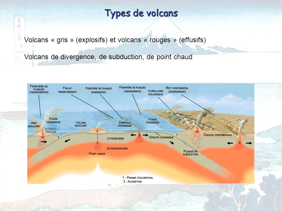 Types de volcans Volcans « gris » (explosifs) et volcans « rouges » (effusifs) Volcans de divergence, de subduction, de point chaud.