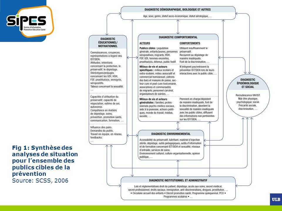 Fig 1: Synthèse des analyses de situation pour l'ensemble des publics cibles de la prévention Source: SCSS, 2006