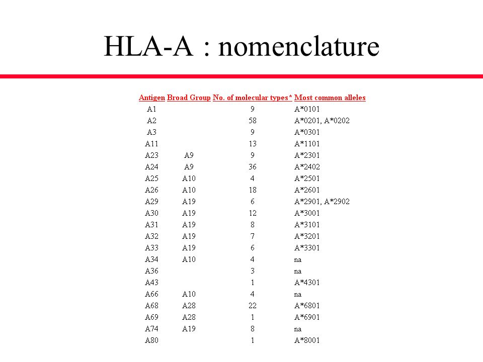 HLA-A : nomenclature
