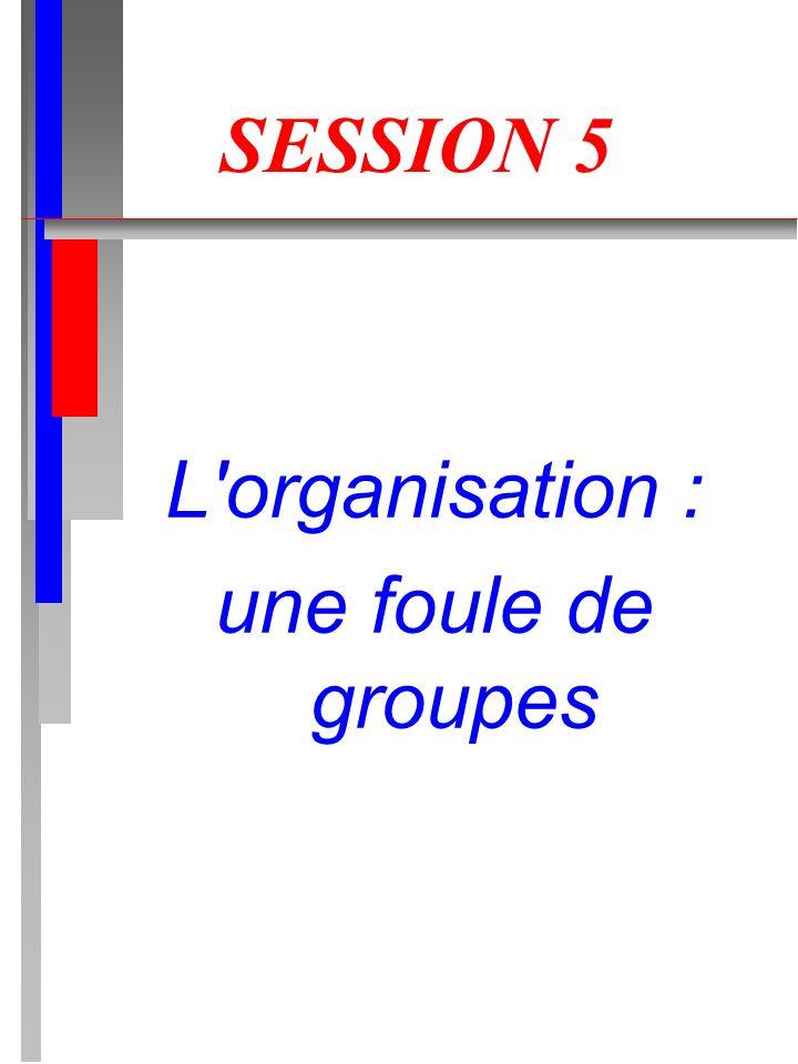 L organisation : une foule de groupes