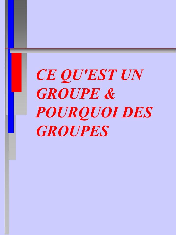 CE QU EST UN GROUPE & POURQUOI DES GROUPES