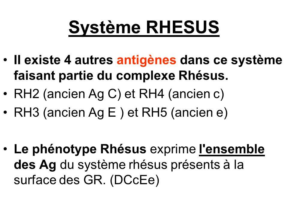 Système RHESUS II existe 4 autres antigènes dans ce système faisant partie du complexe Rhésus. RH2 (ancien Ag C) et RH4 (ancien c)