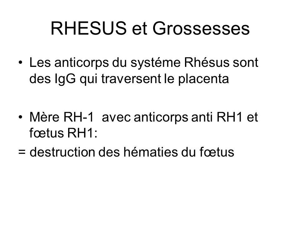 RHESUS et Grossesses Les anticorps du systéme Rhésus sont des IgG qui traversent le placenta. Mère RH-1 avec anticorps anti RH1 et fœtus RH1: