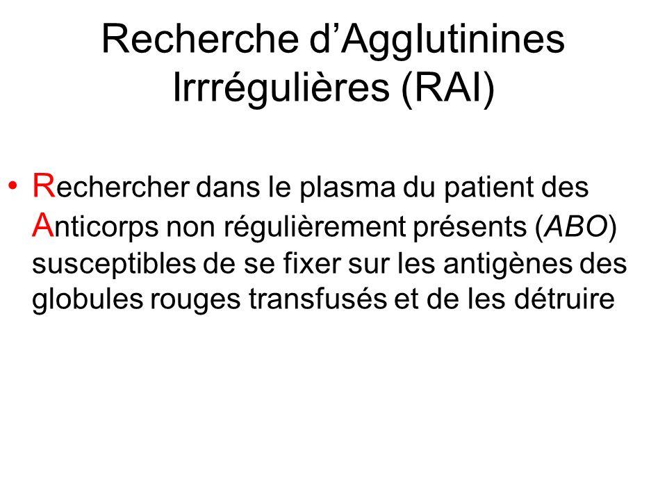 Recherche d'AggIutinines Irrrégulières (RAI)