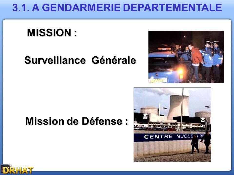 3.1. A GENDARMERIE DEPARTEMENTALE Surveillance Générale