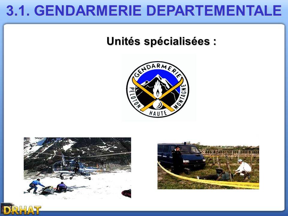 3.1. GENDARMERIE DEPARTEMENTALE