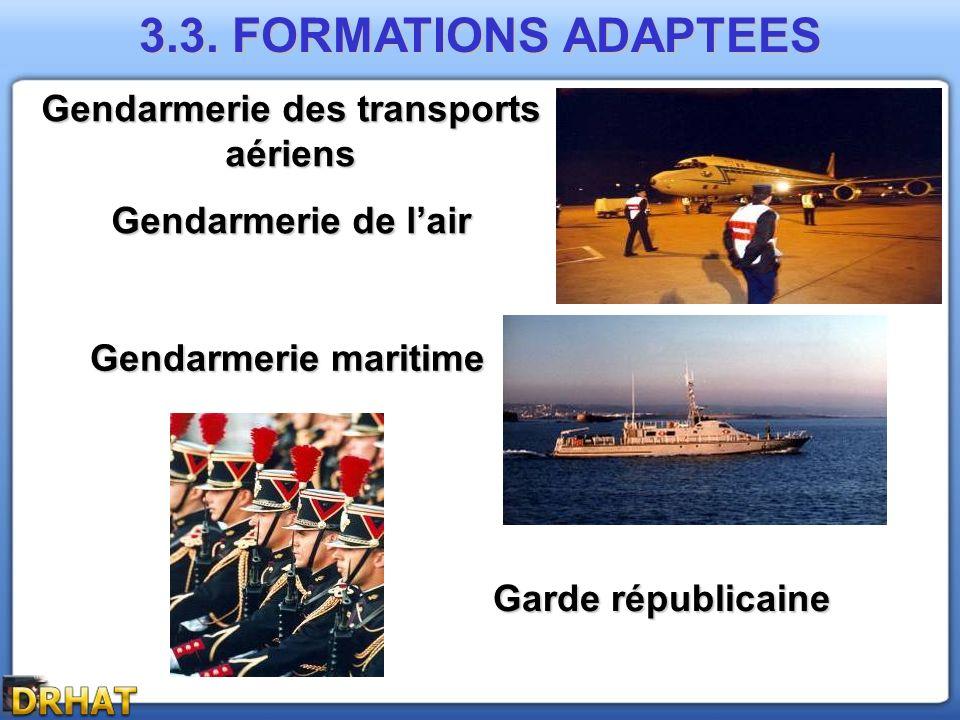 Gendarmerie des transports aériens