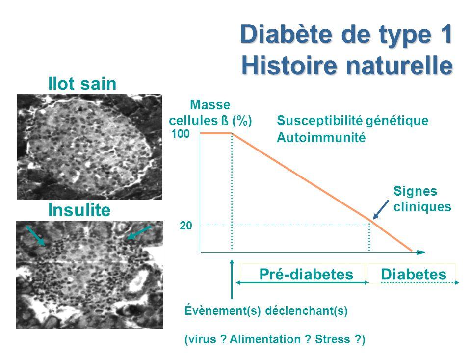 Diabète de type 1 Histoire naturelle