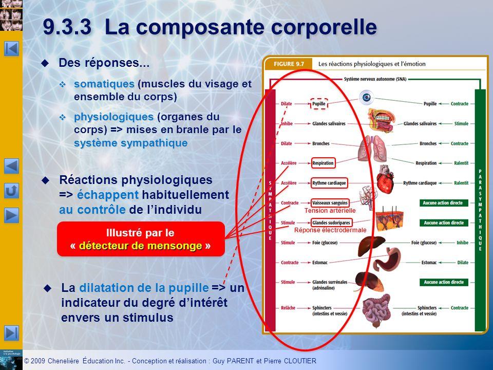 9.3.3 La composante corporelle