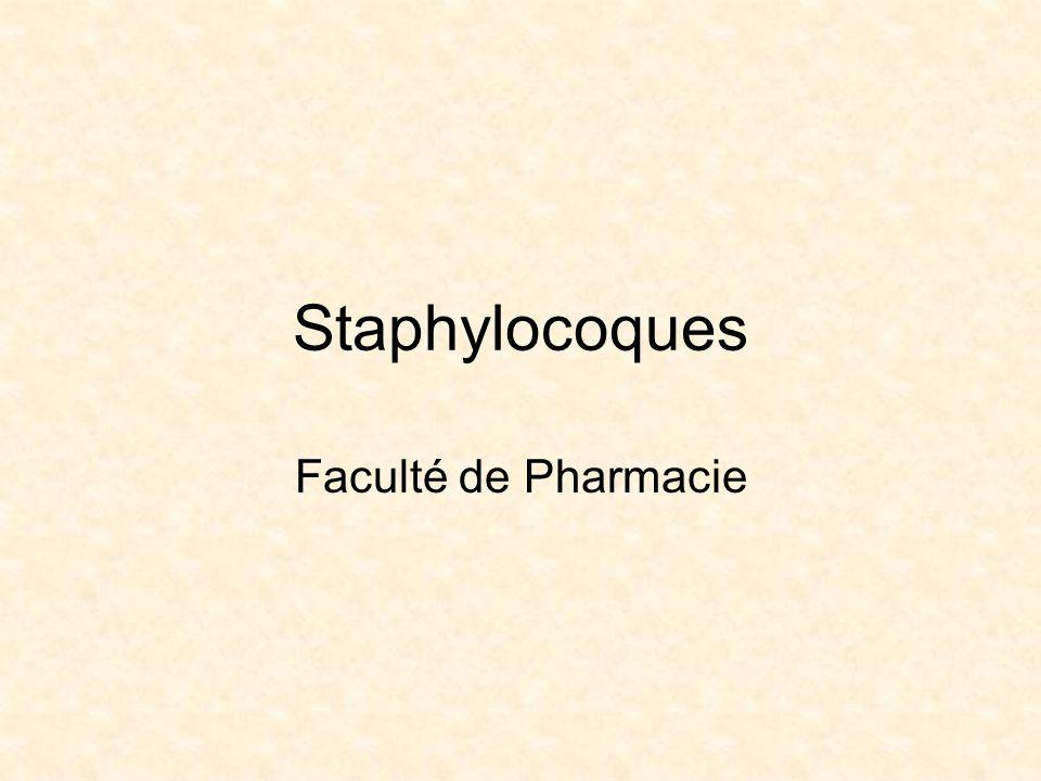 Staphylocoques Faculté de Pharmacie