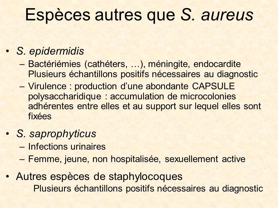 Espèces autres que S. aureus
