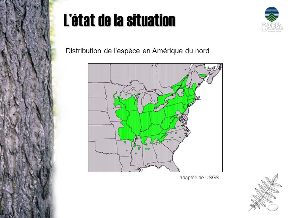 L'état de la situation Distribution de l'espèce en Amérique du nord