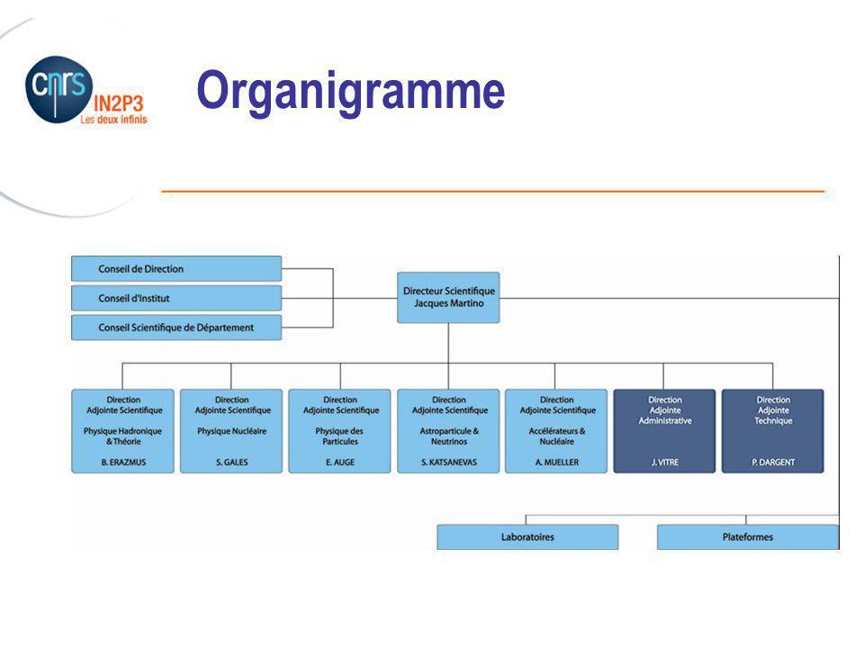 Organigramme 24