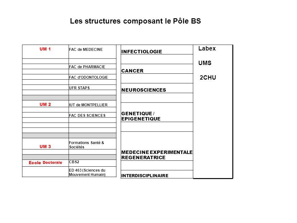 Les structures composant le Pôle BS