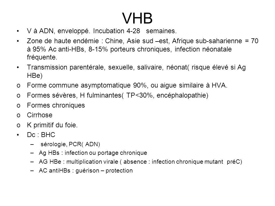 VHB V à ADN, enveloppé. Incubation 4-28 semaines.