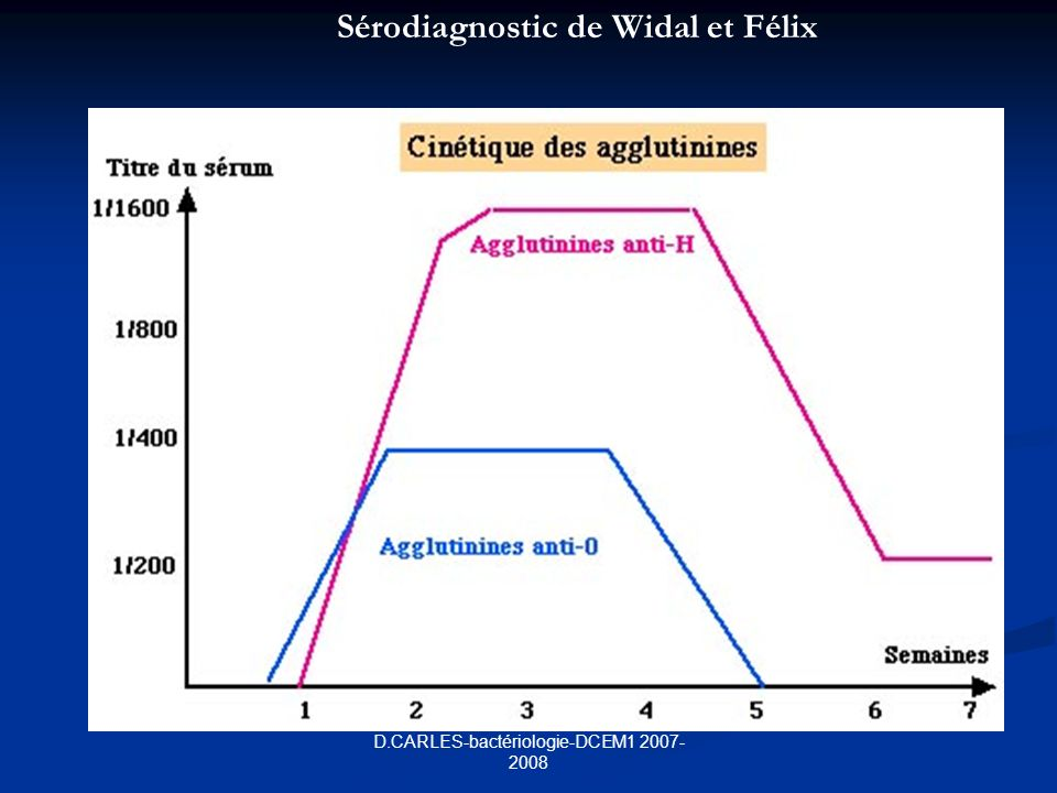 D.CARLES-bactériologie-DCEM1 2007-2008