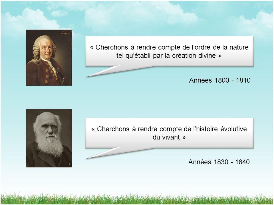 « Cherchons à rendre compte de l'histoire évolutive du vivant »