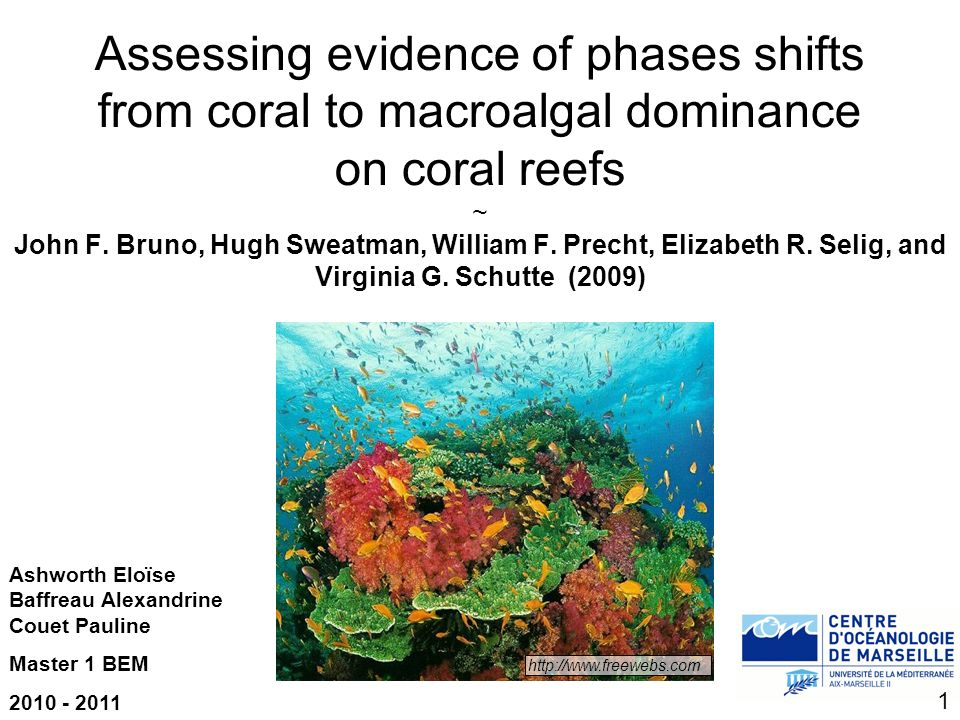 Assessing evidence of phases shifts from coral to macroalgal dominance on coral reefs ~ John F. Bruno, Hugh Sweatman, William F. Precht, Elizabeth R. Selig, and Virginia G. Schutte (2009)