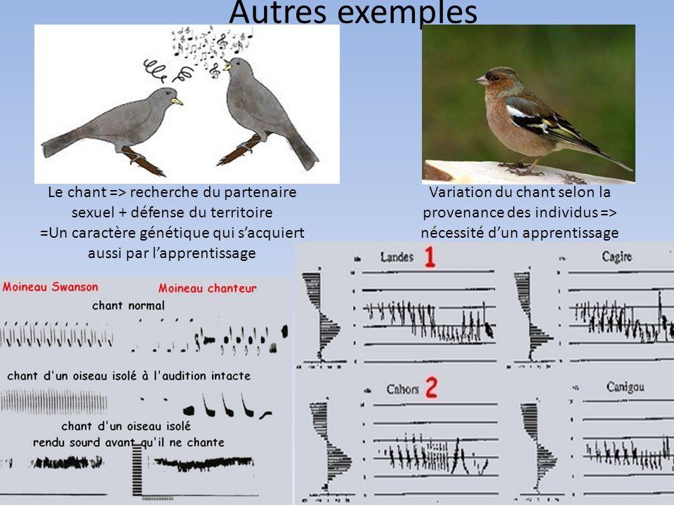 Autres exemples Le chant => recherche du partenaire sexuel + défense du territoire. =Un caractère génétique qui s'acquiert aussi par l'apprentissage.