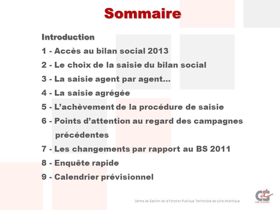 Sommaire Introduction 1 - Accès au bilan social 2013