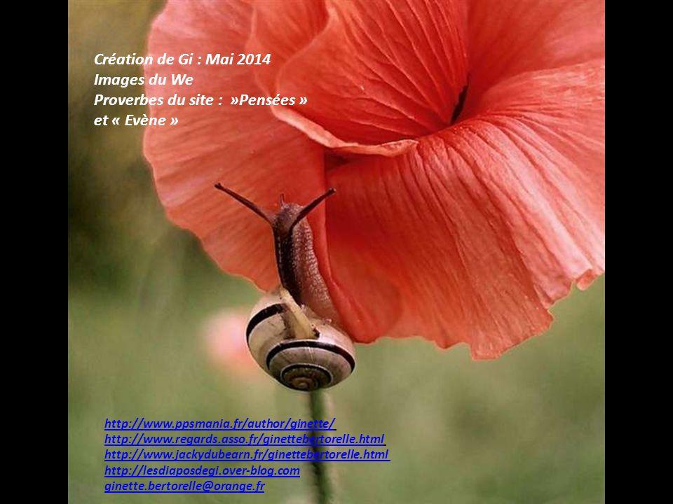 Proverbes du site : »Pensées » et « Evène »