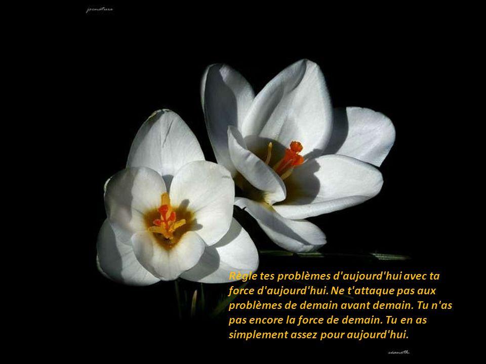 Règle tes problèmes d aujourd hui avec ta force d aujourd hui