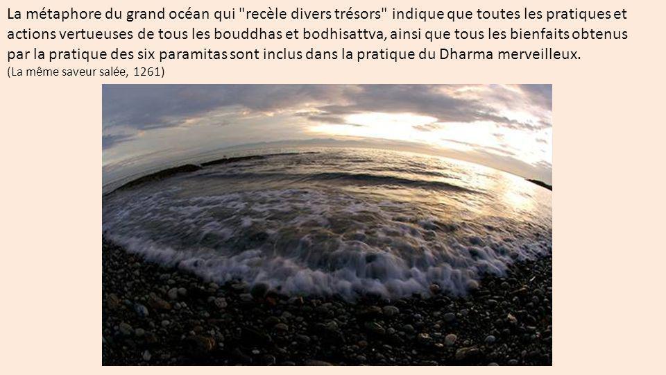 La métaphore du grand océan qui recèle divers trésors indique que toutes les pratiques et actions vertueuses de tous les bouddhas et bodhisattva, ainsi que tous les bienfaits obtenus par la pratique des six paramitas sont inclus dans la pratique du Dharma merveilleux.