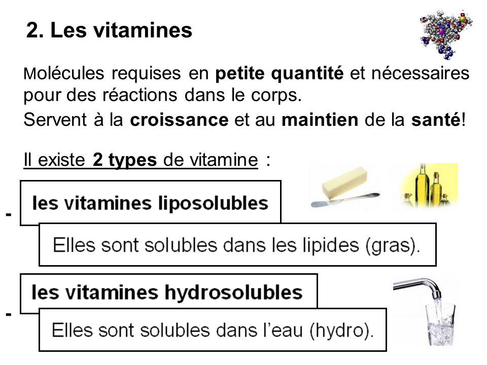 2. Les vitamines Molécules requises en petite quantité et nécessaires pour des réactions dans le corps.